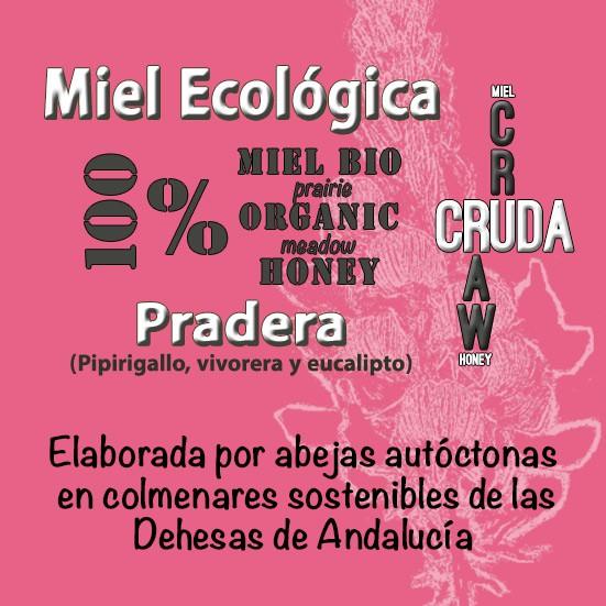 6 Kg Miel Ecológica Pradera