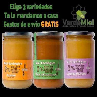 Miel brut biologique pack cadeaux VerdeMiel