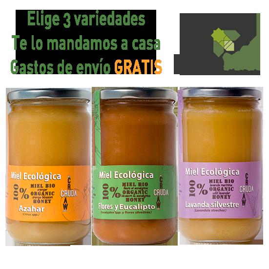 Local Organic Raw Honey VerdeMiel