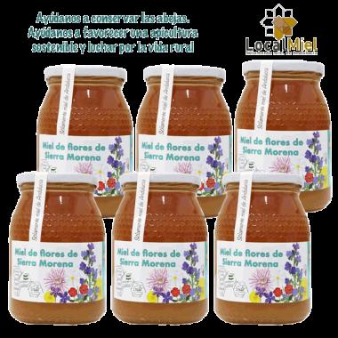 6 Kg Miel de fleurs de Sierra Morena LocalMiel