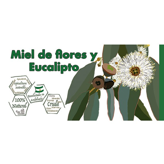 6 jars flower honey and eucalyptus